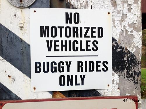 No-Vehicles