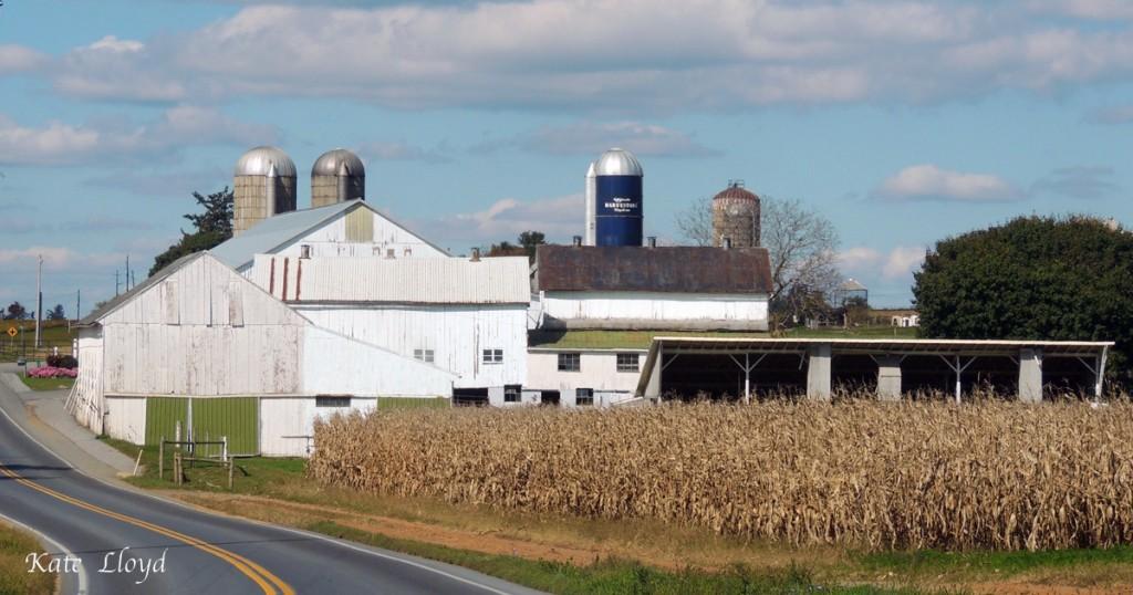 11-1-15Lancaster-County-farm