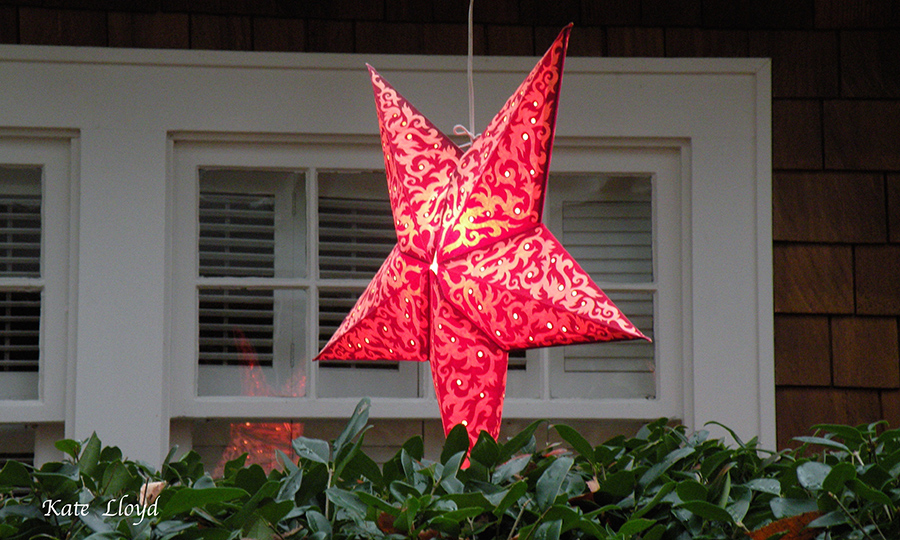 I enjoy over-the-top decorations, but fell in love with this elegant star.