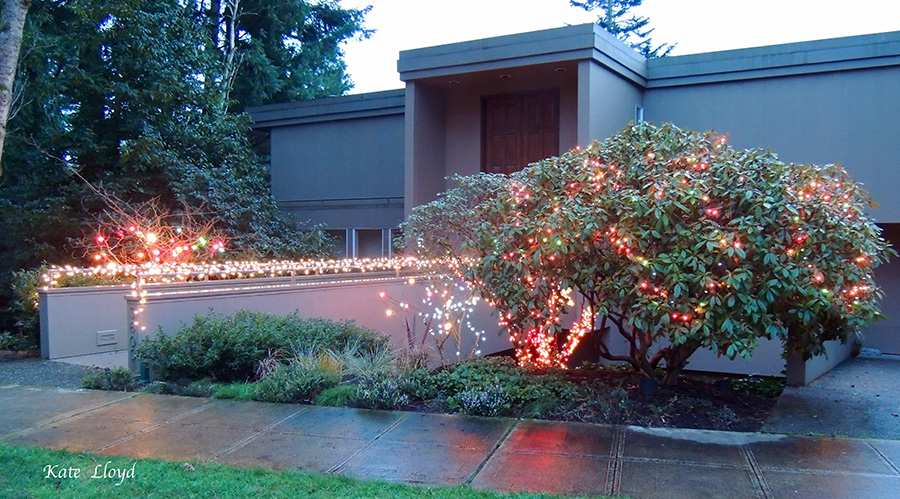 Sparkling lights seem to bring warmth to every architectural style.