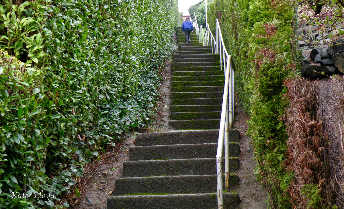 Who needs to go to a gym with stairs like these? (puff, puff)