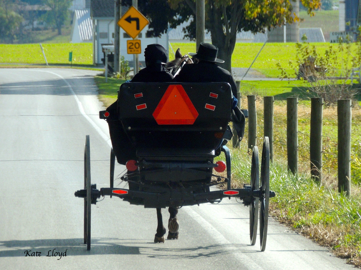 Amish couple heading home after church service.