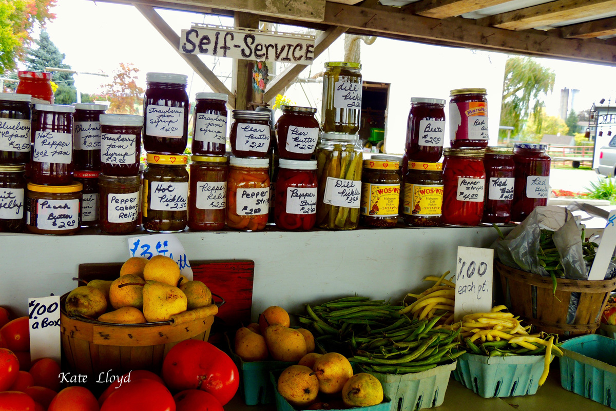 What a delight to find these Amish-made jams and jellies for sale at the side of the road.