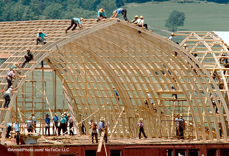 Amish volunteers raise a new barn in Lancaster County, PA. (photo used with permission)