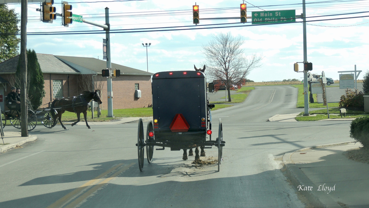 An occasional traffic snarl in Lancaster County.