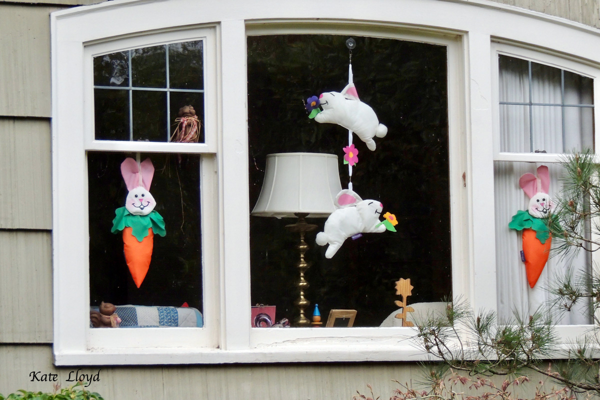 If I knew who lived here, I'd thank them for the entertaining windows!