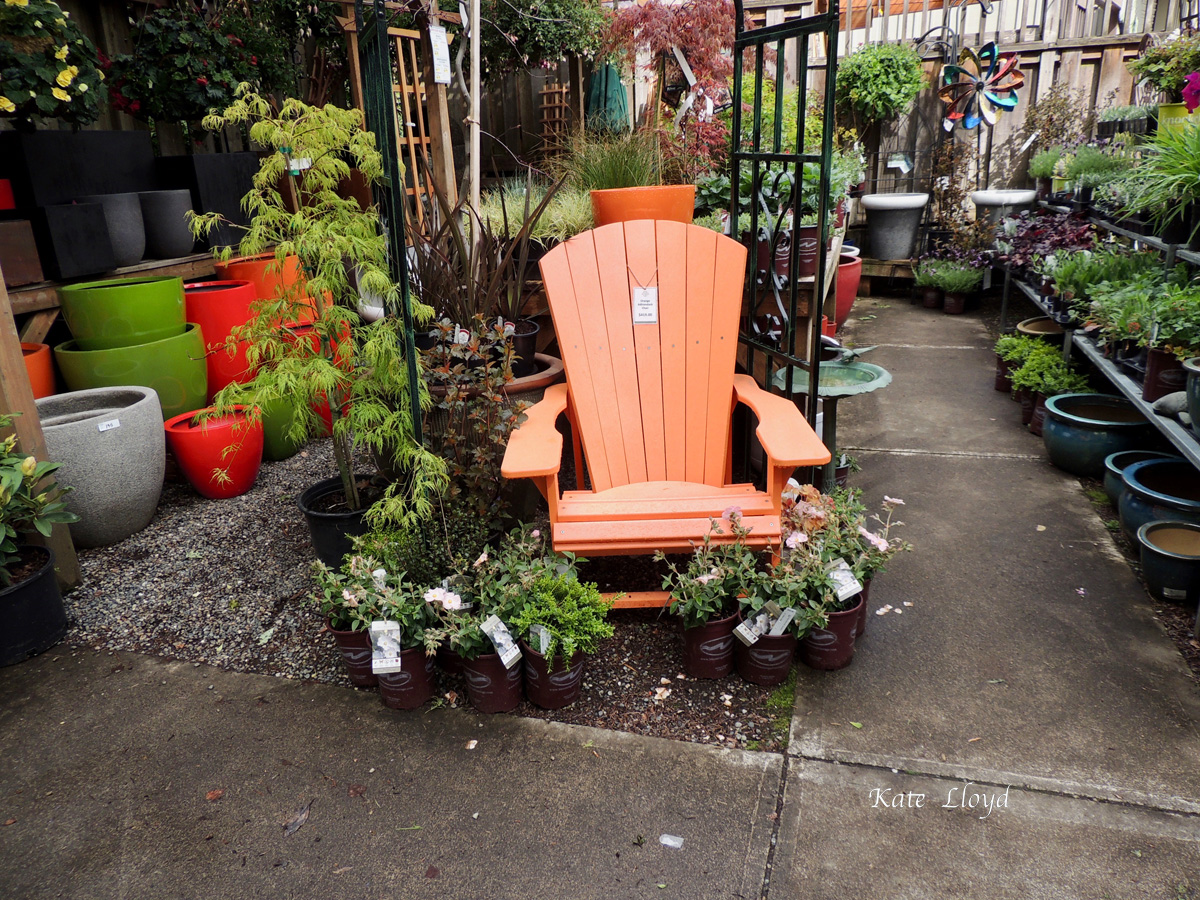 A trip to the local nursery … I want this chair!
