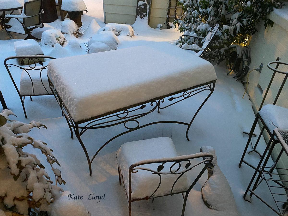 Our snow-covered deck hasn't looked like this in years.