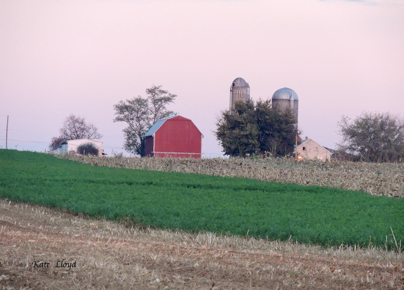 A Lancaster County farm after corn harvest.